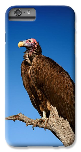Lappetfaced Vulture Against Blue Sky IPhone 6 Plus Case by Johan Swanepoel