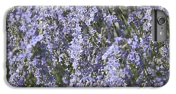 Beautiful iPhone 6 Plus Case - #lavender by Georgia Fowler