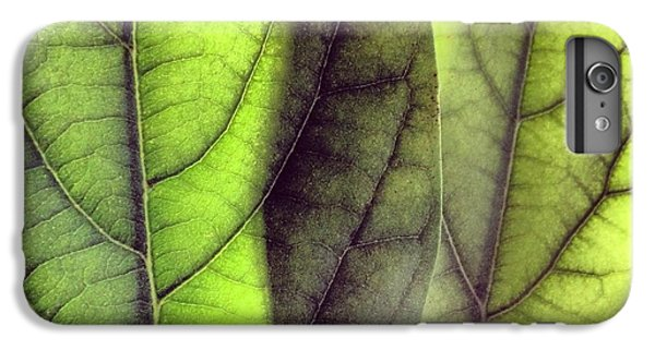 Green iPhone 6 Plus Case - Leaf Abstract by Christy Beckwith