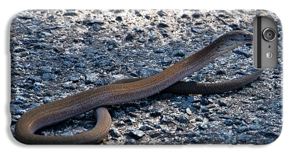 IPhone 6 Plus Case featuring the photograph Legless Lizard Or A Snake ? by Miroslava Jurcik