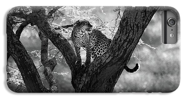 Africa iPhone 6 Plus Case - Leopard by Bjorn Persson