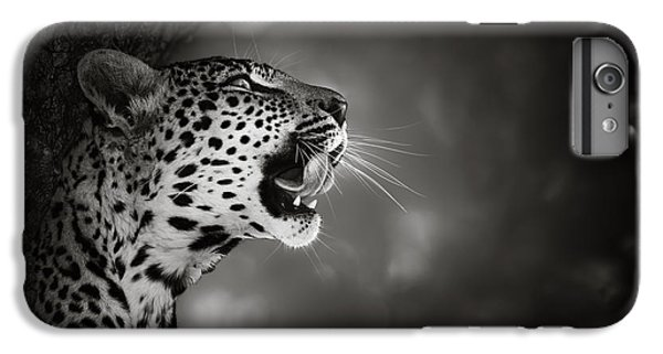 Wildlife iPhone 6 Plus Case - Leopard Portrait by Johan Swanepoel