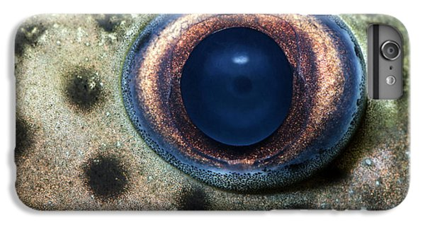 Catfish iPhone 6 Plus Case - Leopard Sailfin Pleco Eye Abstract by Nigel Downer