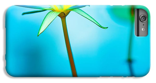 Lily iPhone 6 Plus Case - Lily In Blue by Bill  Robinson