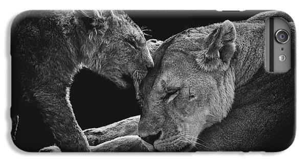 Lion iPhone 6 Plus Case - Lion Family by Vedran Vidak