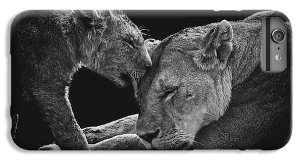 Africa iPhone 6 Plus Case - Lion Family by Vedran Vidak