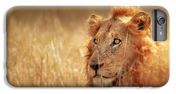 Lion Head iPhone 6 Plus Case - Lion In Grass by Johan Swanepoel