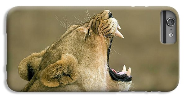 Lion Head iPhone 6 Plus Case - Lioness Yawning by Peter Chadwick/science Photo Library