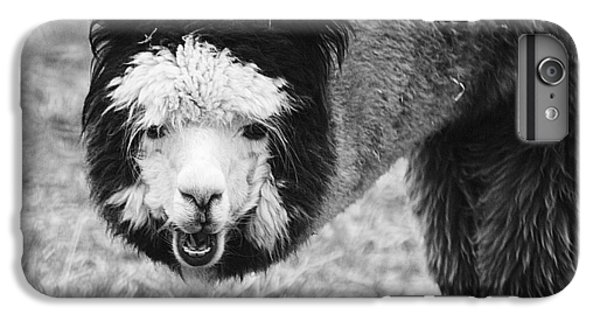 IPhone 6 Plus Case featuring the photograph Llama by Yulia Kazansky