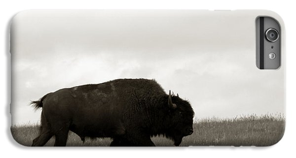 Lone Bison IPhone 6 Plus Case by Olivier Le Queinec