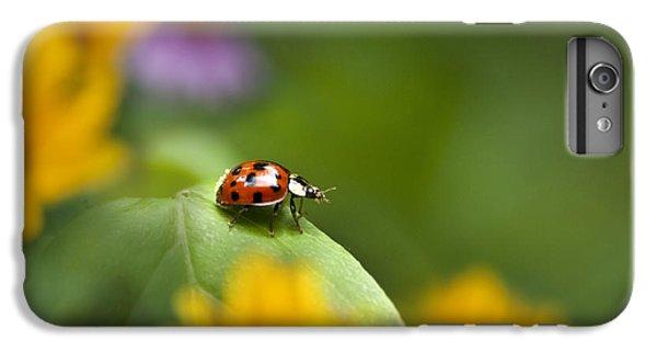 Lonely Ladybug IPhone 6 Plus Case by Christina Rollo