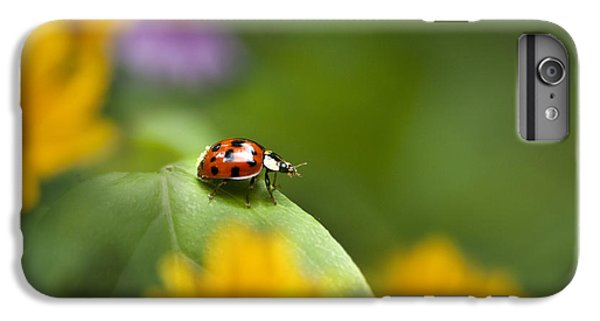 Lonely Ladybug IPhone 6 Plus Case by Christina Rollo