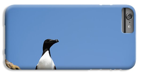 Razorbill iPhone 6 Plus Case - Look At Me by Anne Gilbert