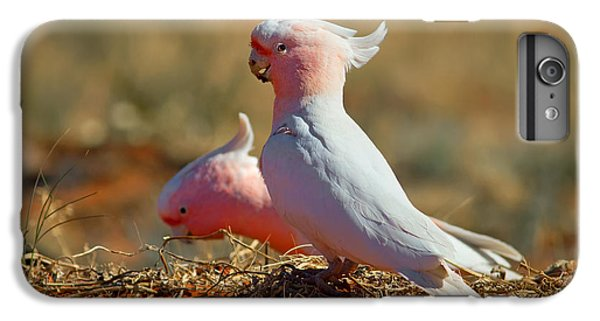 Cockatoo iPhone 6 Plus Case - Major Mitchel Cockatoo by Bill  Robinson