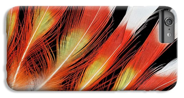 Cockatoo iPhone 6 Plus Case - Major Mitchell Cockatoo Crown Feather by Darrell Gulin