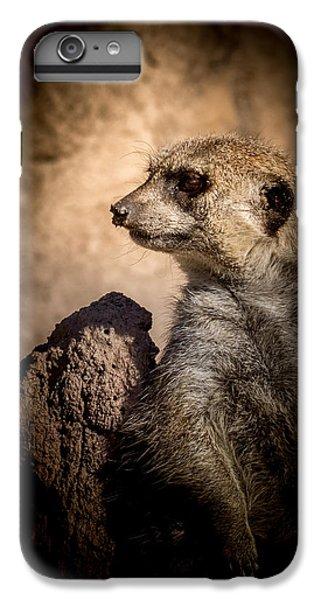 Meerkat 12 IPhone 6 Plus Case by Ernie Echols