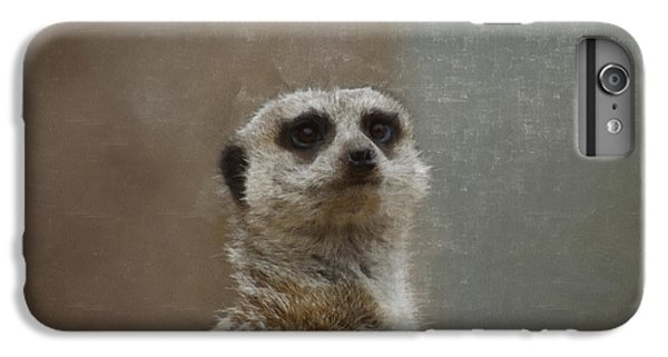 Meerkat 5 IPhone 6 Plus Case by Ernie Echols