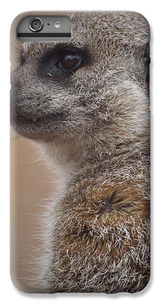 Meerkat 9 IPhone 6 Plus Case by Ernie Echols