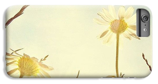 #mgmarts #daisy #all_shots #dreamy IPhone 6 Plus Case