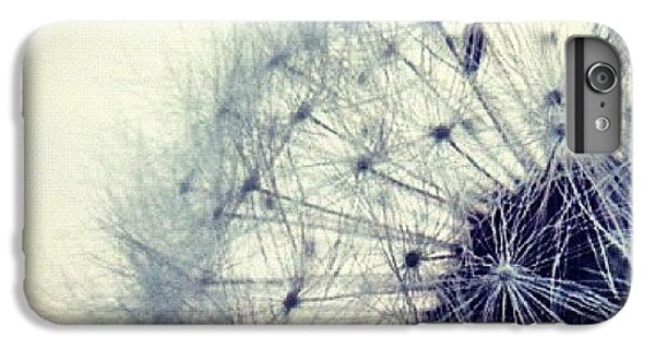 Sky iPhone 6 Plus Case - #mgmarts #dandelion #love #micro by Marianna Mills