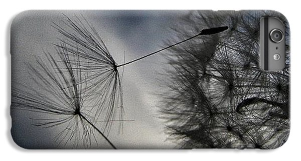#mgmarts #dandelion #makeawish #wish IPhone 6 Plus Case