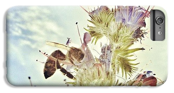 #mgmarts #flower #spring #summer #bee IPhone 6 Plus Case