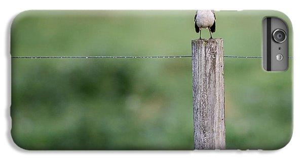 Minimalism Mockingbird IPhone 6 Plus Case by Bill Wakeley