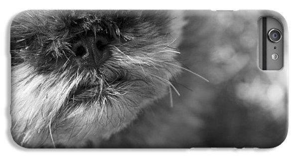 Griffon iPhone 6 Plus Case - Moby by Matthew Blum