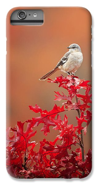 Mockingbird iPhone 6 Plus Case - Mockingbird Autumn by Bill Wakeley