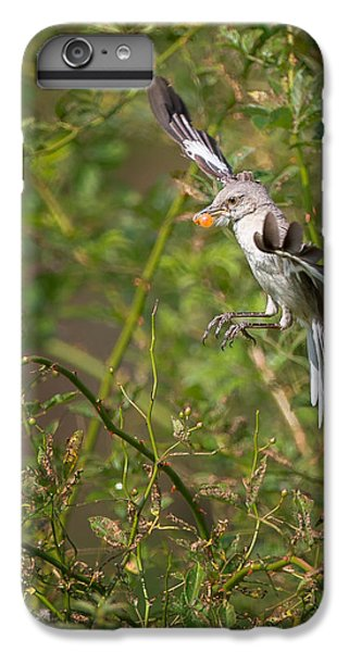 Mockingbird IPhone 6 Plus Case by Bill Wakeley