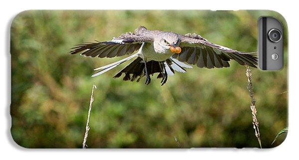 Mockingbird In Flight IPhone 6 Plus Case by Bill Wakeley