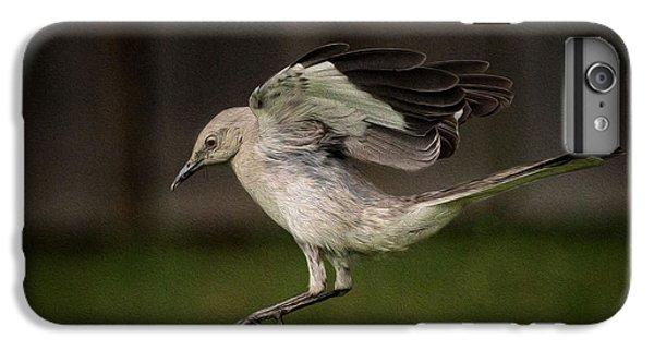 Mockingbird No. 2 IPhone 6 Plus Case by Rick Barnard