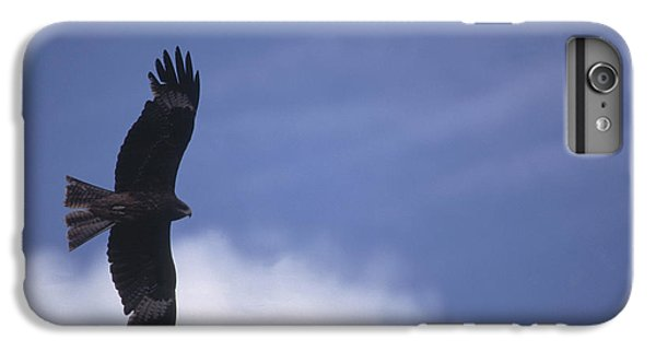 Condor iPhone 6 Plus Case - Mongolia by Anonymous