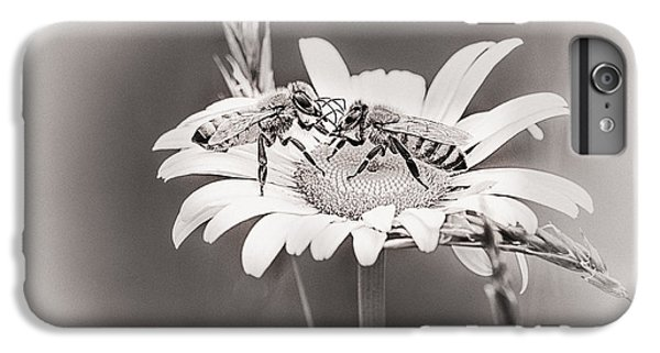Honeybee iPhone 6 Plus Case - Morning News by Susan Capuano