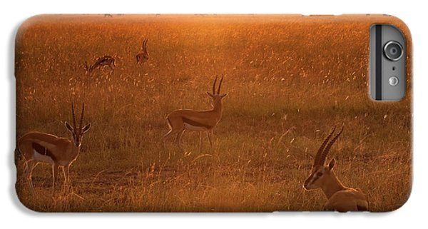 Africa iPhone 6 Plus Case - Morning by Phillip Chang