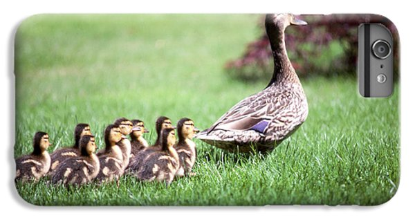 Mumma Duck And Kids IPhone 6 Plus Case by King Wu