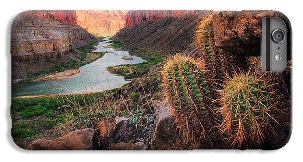 Desert iPhone 6 Plus Case - Nankoweap Cactus by Inge Johnsson