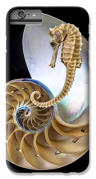 Nautilus With Seahorse IPhone 6 Plus Case by Garry Gay