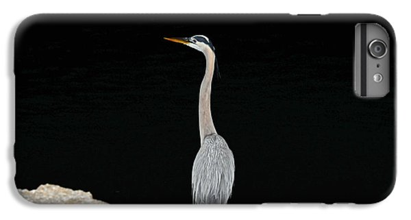 Night Of The Blue Heron 2 IPhone 6 Plus Case