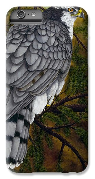 Northern Goshawk IPhone 6 Plus Case by Rick Bainbridge