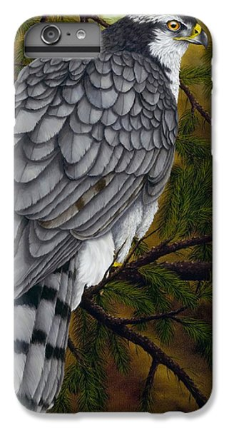 Northern Goshawk IPhone 6 Plus Case by Rick Bainbridge