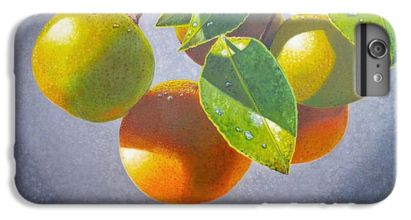 Oranges IPhone 6 Plus Case by Carey Chen
