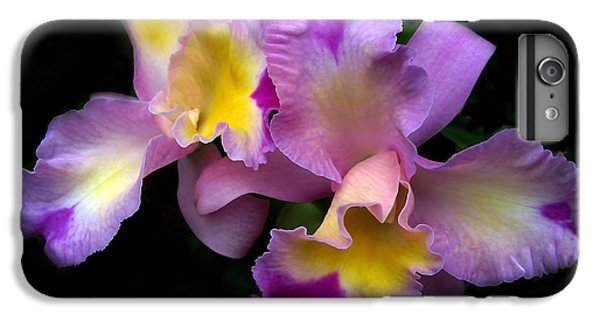 Orchid Embrace IPhone 6 Plus Case by Jessica Jenney