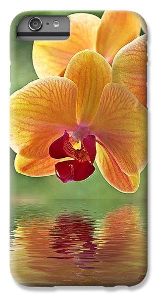 Oriental Spa - Square IPhone 6 Plus Case