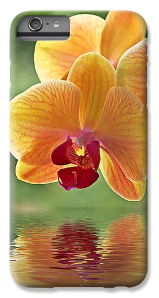 Orchid iPhone 6 Plus Case - Oriental Spa - Square by Gill Billington