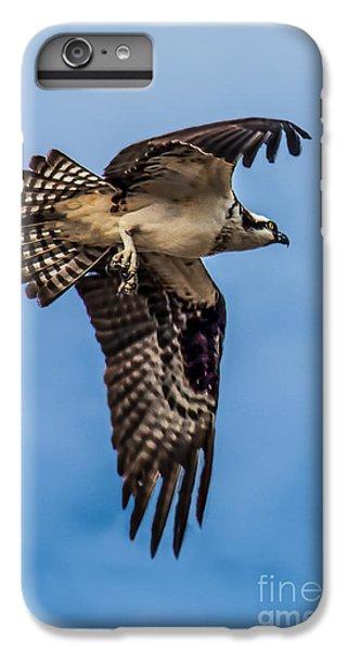 Osprey iPhone 6 Plus Case - Osprey Flying Away by Robert Bales