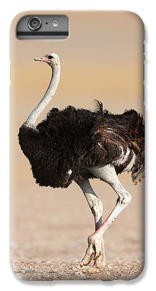 Ostrich IPhone 6 Plus Case by Johan Swanepoel