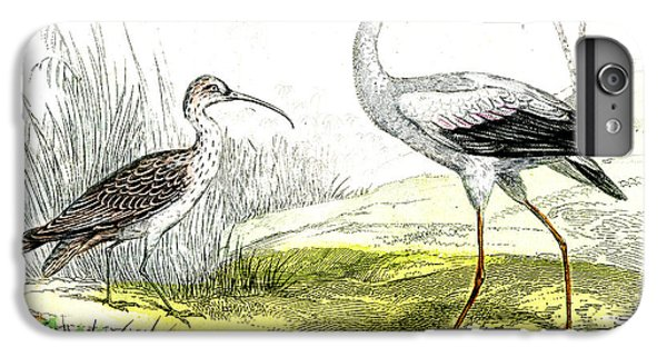 Painted Storks IPhone 6 Plus Case