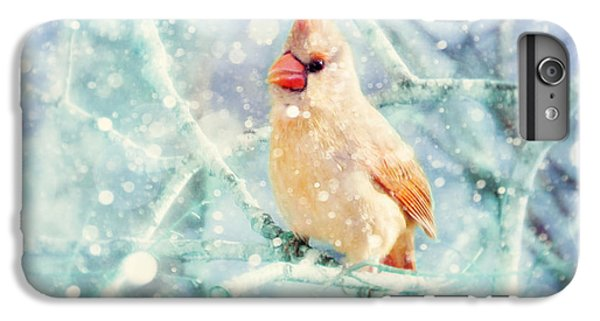 Peaches In The Snow IPhone 6 Plus Case by Amy Tyler