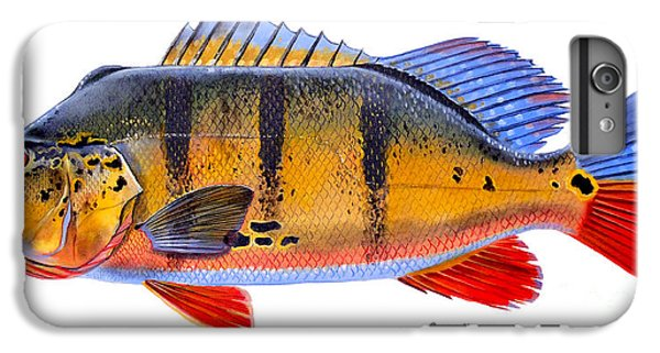 Catfish iPhone 6 Plus Case - Peacock Bass by Carey Chen